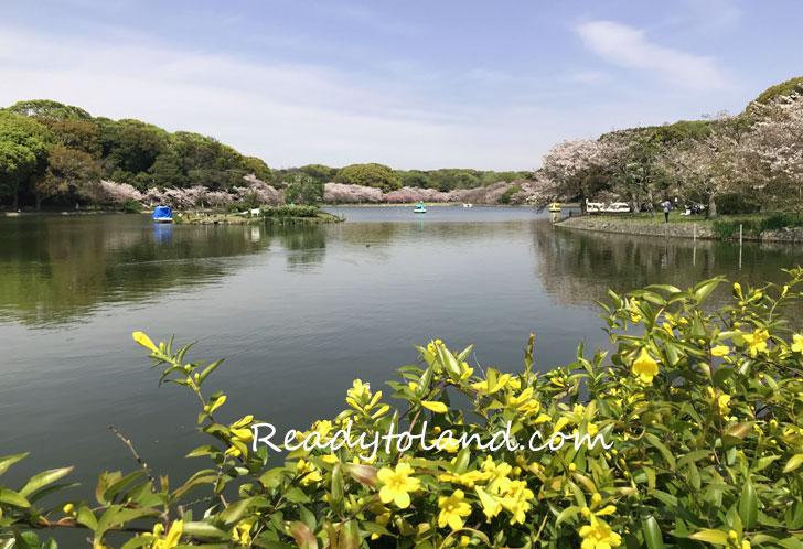 Akashijo Park