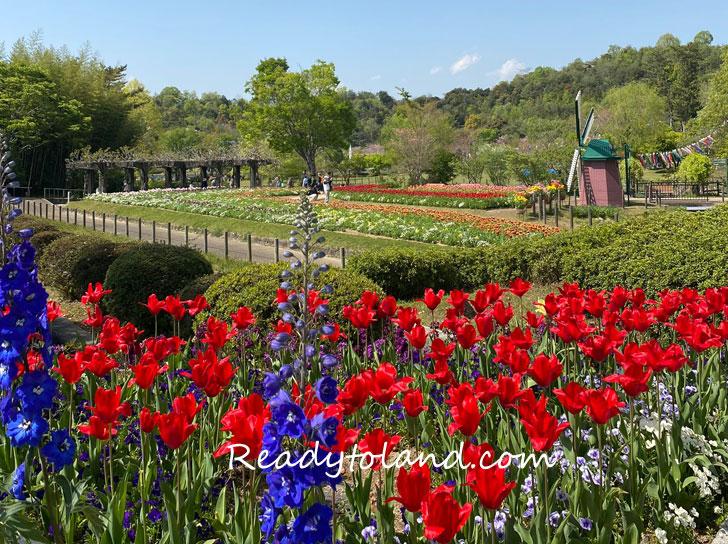 Hyogo flower center, Kasai
