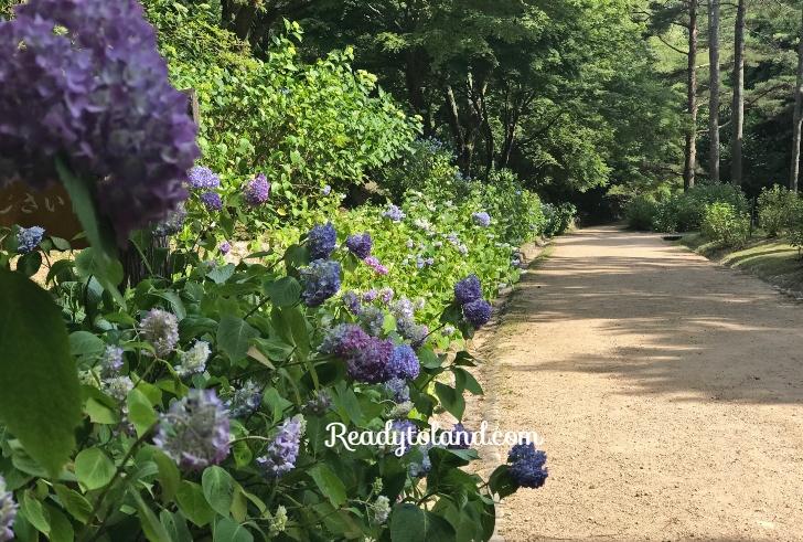 Municipal-arboretum, Kobe